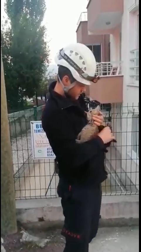 Yavru kedi Büyükşehir İtfaiyesi'nin müdahalesiyle hayata döndü