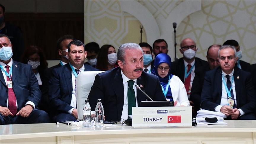 TBMM Başkanı Şentop: FETÖ kardeş ülkelerin milli güvenliğine tehdit oluşturuyor