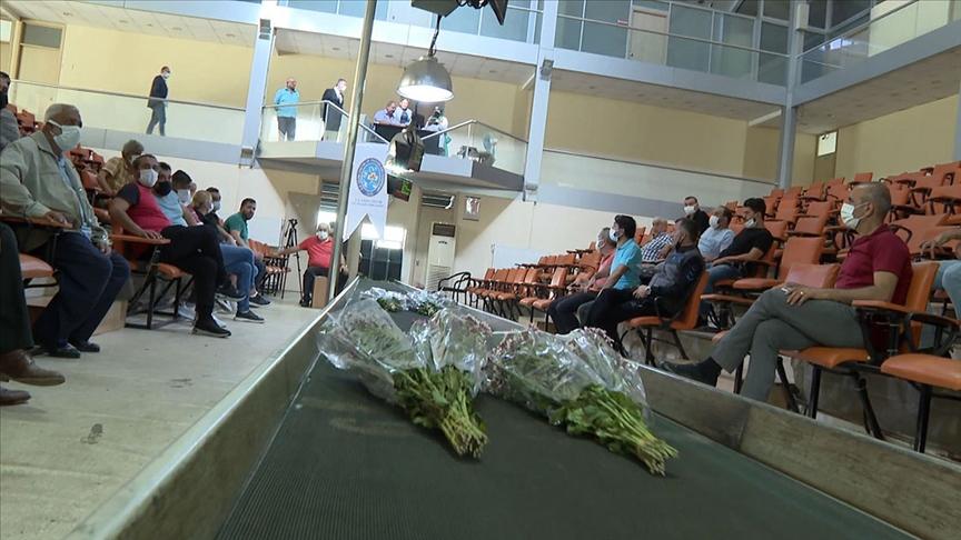 Çiçekçiler kooperatifi ile İBB mahkemenin kararını bekliyor