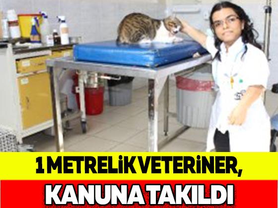 1 METRELİL VETERİNER, KANUNA TAKILDI