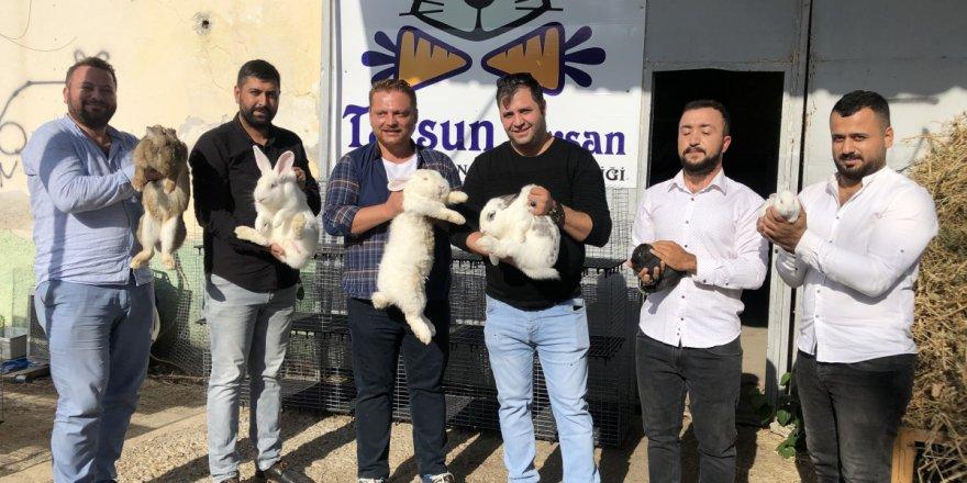 Tavşanla hayatları değişti