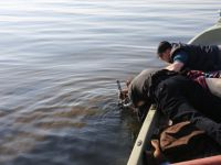 Göl Dibinde yapılan araştırmalarda Sikkelerden sonra Altın Küpe Çıktı