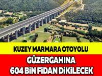 KUZEY MARMARA OTOYOLU GÜZERGAHINA 604 BİN FİDAN DİKİLECEK