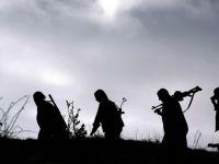 TSK: Şırnak'ta 2 terörist etkisiz hale getirildi