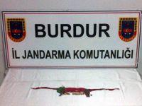 Burdur'da tarihi eser operasyonu: 1 gözaltı