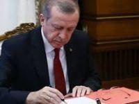 Cumhurbaşkanı Erdoğan'dan Milli Sporcuya Tebrik Telgrafı