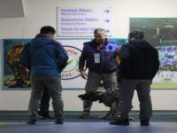 Fenerbahçe'nin soyunma odasında bomba araması yapıldı