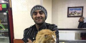 Kayıp kedisini bulan yaşadı! 5 bin TL, 1 sene ücretsiz...