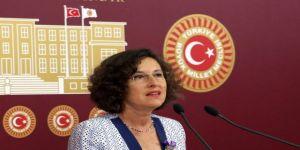 HDP Grup Başkanvekili Kerestecioğlu:Muhalefet yolundan temizlenmeyeceğiz