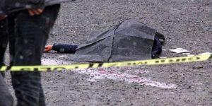 Eşini ve kayınvalidesini yol kenarında öldürdü