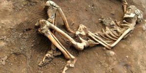 Mezarlıktan kemik çalıp kaçakçılığını yapan şahıslar yakalandı
