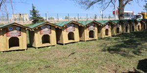 Tapulu köpek evleri teslim edildi
