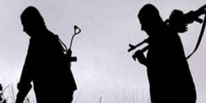 PKK yöneticisi Kulp kırsalında yakalandı
