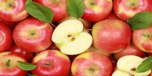 Kabuğuyla yenen elma kanserden koruyor