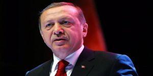 Cumhurbaşkanı Erdoğan, Danıştay Üyeliğine Taci Bayhan'ı Seçti