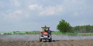 Bitkisel Üretimin Bir Önceki Yıla Göre Artacağı Tahmin Edildi