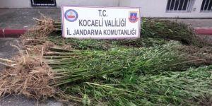 Kocaeli'nde 41 kilo eroin ele geçirildi