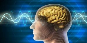 Hafızayı kuvvetlendiren cihaz geliştirildi