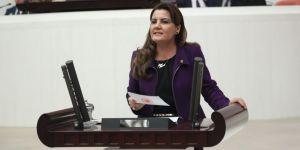 CHP'li vekil o sorunları meclise taşıdı