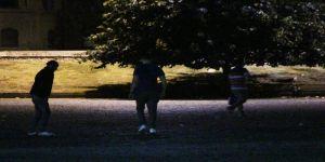 İstanbul Üniversitesi Önünde İbretlik 'Bonzai' Manzarası