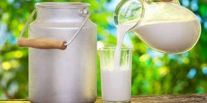 Edirne'de Üreticilerden Süt Fiyatlarına Tepki