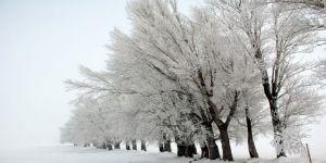 Dikkat: Kuvvetli Kar Yağışı Bekleniyor !