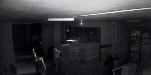 Organize Hırsızlık Kamerada