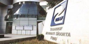 TMSF, 9 şirketi tasfiye ediyor