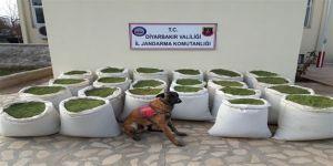 Diyarbakır'da teröre darbe üstüne darbe