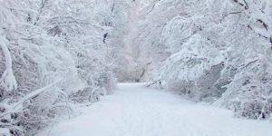 Meteorolojiden Tunceli ve Bingöl için kar uyarısı
