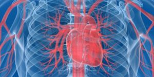 Anjiyo yapılan hastaya stent takılmadığı iddiası