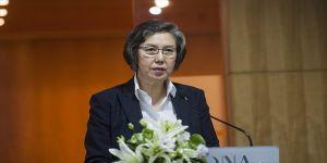 BM Özel Raportöründen Myanmar kararı