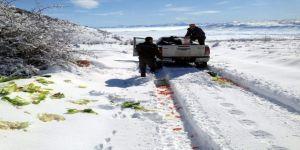 Orman ve Su İşleri Müdürlüğü yaban hayvanları için yem bıraktı