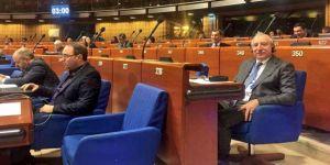 Miroğlu'ndan Avrupa Konseyine eleştiri