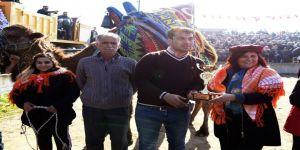 Çerçioğlu, Atça deve güreşine katıldı