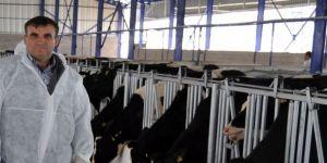 Küpeleme işlemlerini süt birlikleri yapacak
