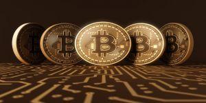 Bitcoin dolandırıcısının evinden çıkan paraların sergisi yapıldı