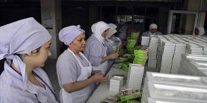 Safranbolu lokumu kadınların elinde tatlanıyor