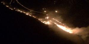 Orman yandı !