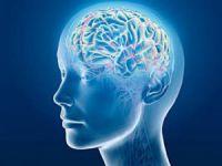 Beyin ile İlgili Yanlış Bilinenler!