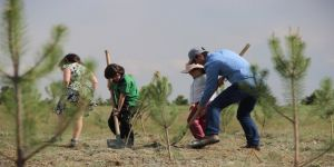 Açıköğretim Ormanları büyümeye devam ediyor