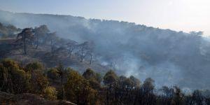 Anızdan çıkan yangında 200 hektar alan kül oldu