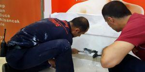 Yavru kedi duvar kırılarak kurtarıldı