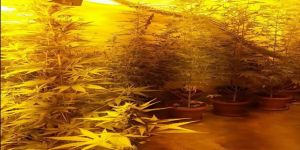 Uyuşturucu madde üreticilerine operasyon