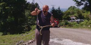 Yılanı kurtarmak için her şeyi yaptı