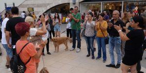 Patileri kesilerek katledilen köpek için hayvanseverlerden eylem