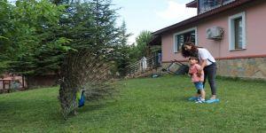 Bu çocuklar hayvanlarla mutlu oluyor