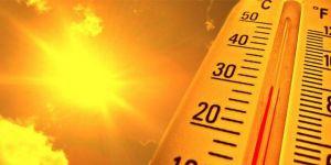 Hava sıcaklığı 50 dereceyi aştı
