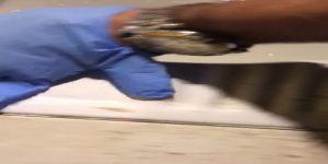 Polisin tuvalete dökülen uyuşturucu ile imtihanı
