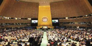 İsrail BM'den kovulsun